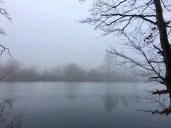 Blick zum Freudenholm im Nebel bei Preetz
