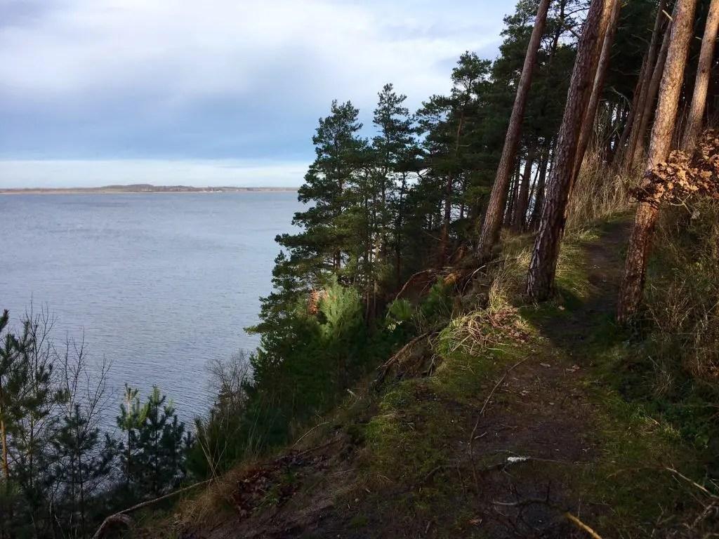 Idylle am Achterwasser - der Singletrail an der Steilküste auf dem Gnitz