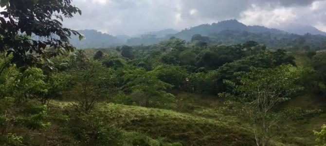 """Trekking in Kolumbien: Wanderung zur """"Verlorenen Stadt"""" (Tag 1 von 4)"""