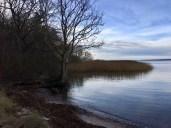 Winterliche Idylle und Ruhe am Achterwasser