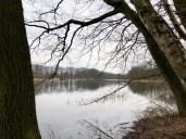 Blick über den Bredenbeker Teich bei Ahrensburg
