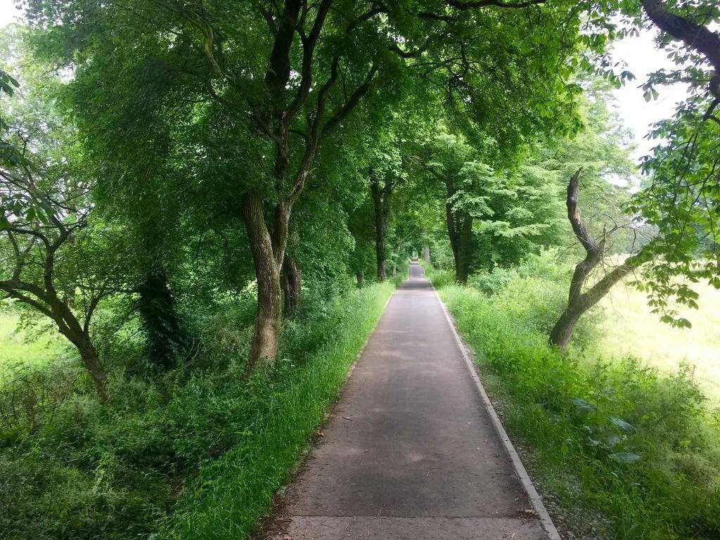 Fahrradtour auf dem Elberadweg: Von Breitenhagen über Dessau in die Lutherstadt Wittenberg