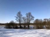 Winterlandschaft im Duvenstedter Brook