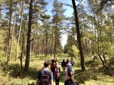 Gruppenwanderung von Güster nach Mölln in Schleswig-Holstein