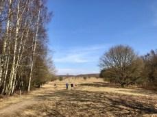 Weites Feld im Naturschutzgebiet Höltigbaum