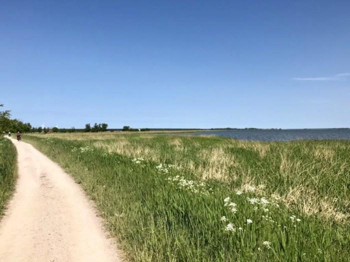 Auf dem Ostseeradweg am Saaler Bodden auf der Halbinsel Darß