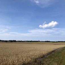 Blick über die Felder nach Lassan