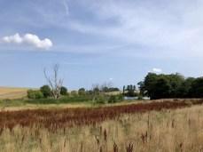 Wanderung im Lassaner Winkel - Blick auf den Kleinen See bei Lassan