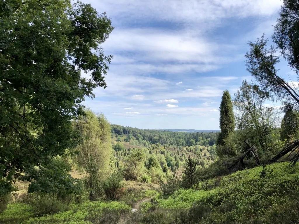 Wandern in der Lüneburger Heide: Auf zum Totengrund