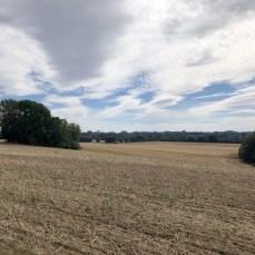 Landschaft am Ostseeradweg bei Warnkenhagen