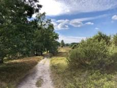 Wanderweg am Totengrund bei Wilsede