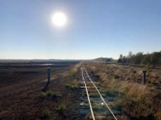 Die Schienen der Torfbahn am nördlichen Rand der Kernzone