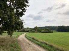 Landschaft am Drägerweg südlich von Lübeck