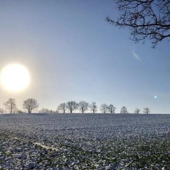 Winterlandschaft bei Bornhöved