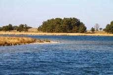 Kleine Lagune auf der Nordspitze der Halbinsel Darß