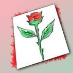 كيفية رسم وردة