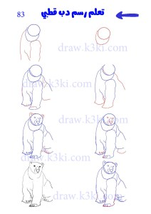 تعلم رسم الدببة