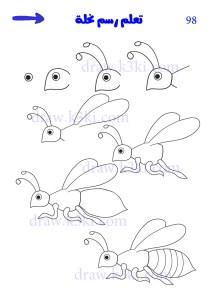 كيفية رسم نحلة