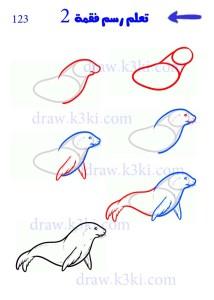 كيفية رسم فقمة