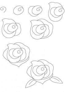 تعلم رسم وردة جورية بعدة أشكال مختلفة