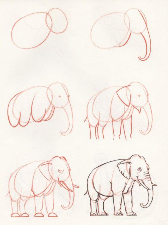 رسم فيل