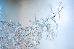 WindowFrost_Crystals7
