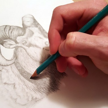 How-To-Hold-A-Pencil (2)