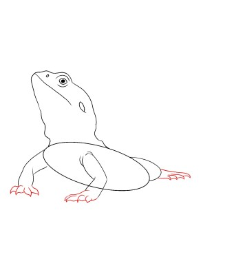 How To Draw A Bearded Dragon Step 4