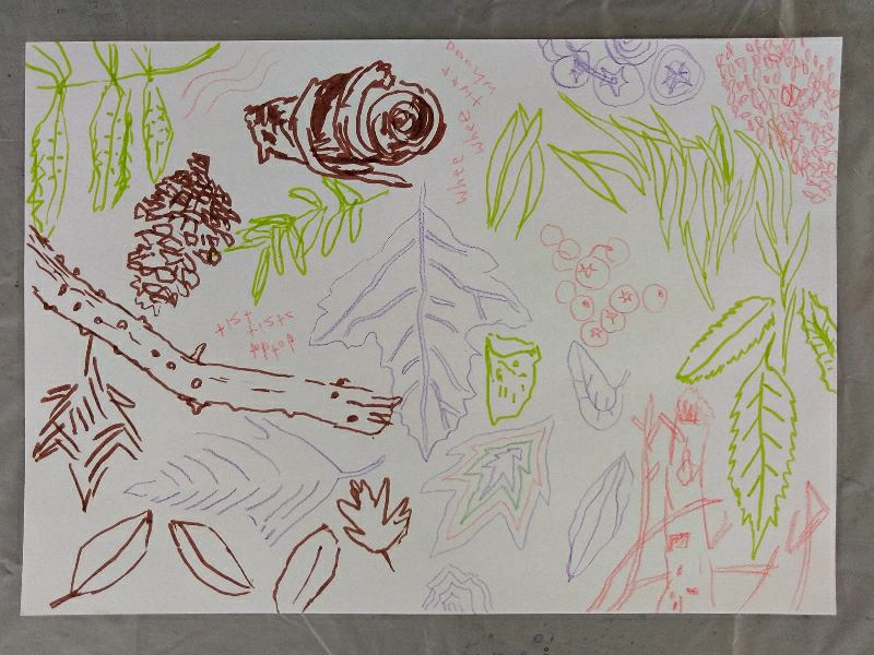 From summer into autumn, forest and natural patterns at Clydebank art groups