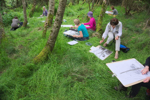 Drawing Trees day at Lenzie