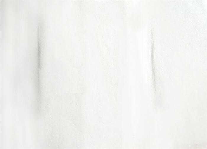 step 1-dog eye drawing