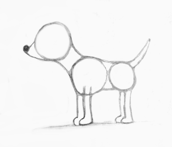 add legs and nose-dog-drawing