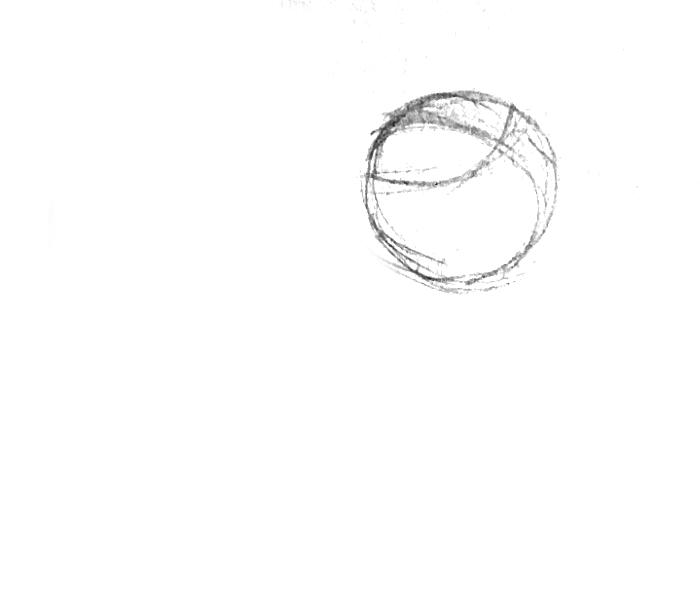 1-dalmation head circle