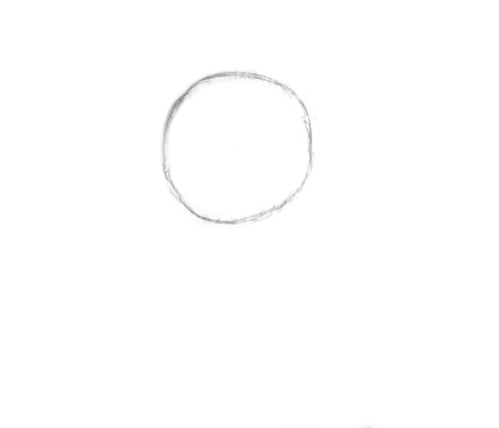 circle-corgi kawaii
