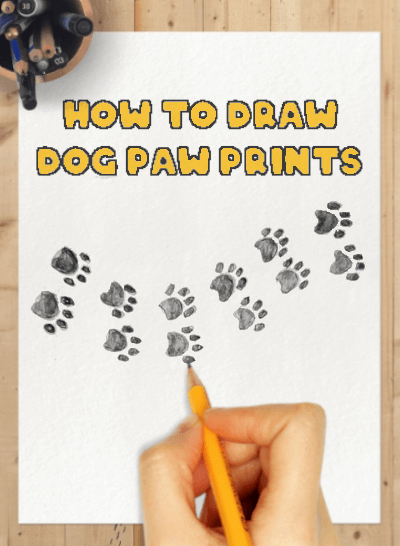 how to draw a dog paw