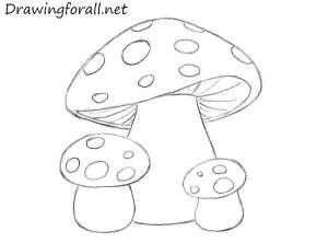 mushrooms draw drawing mushroom easy drawings outline wonderland alice step beginners fungi painting drawingforall tattoos crafts cap cool flat detailed