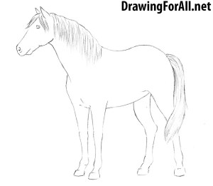horse draw step easy drawing sketch drawings crime drawingforall paintingvalley