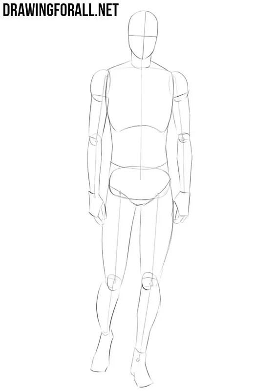 Anime Body Drawing : anime, drawing, Anime, Drawingforall.net