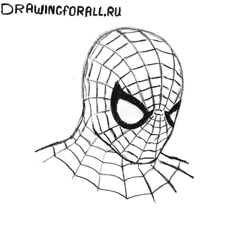 сестричка лицо человека паука картинки нарисовать сколько всего