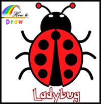 ladybug drawing step draw ladybugs easy cartoon drawings realistic lessons tutorial steps cartoons paintingvalley