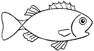 Step 5 How to Draw Cartoon Fish Step by Step Drawing