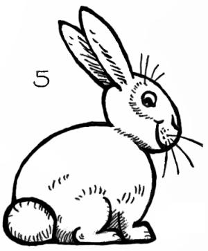 bunny drawing draw easy rabbits bunnies step rabbit