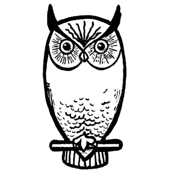 How To Draw Owls With Step By Step Drawing Lesson How To Draw Step By Step Drawing Tutorials