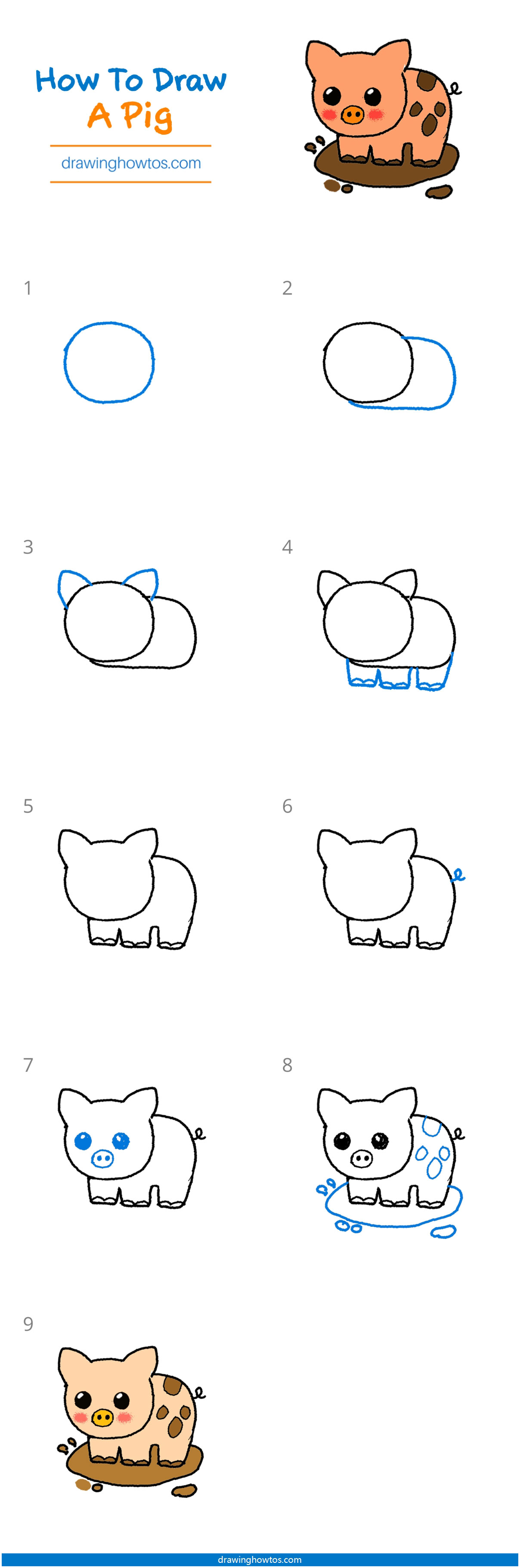 How To Draw A Pig Face : Drawing, Guides, Howtos