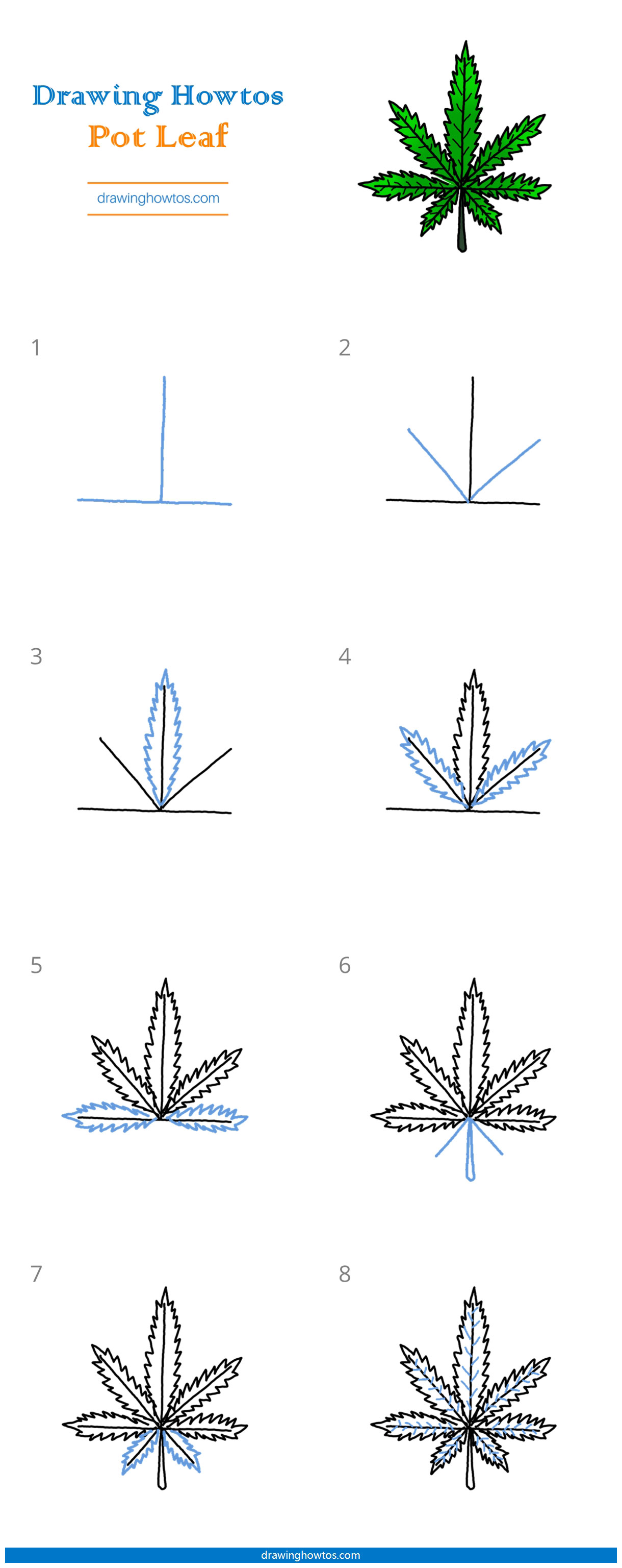 Step By Step Pot Leaf Drawing : drawing, Drawing, Guides, Howtos
