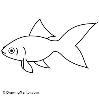 Pin Simple-goldfish-drawing on Pinterest