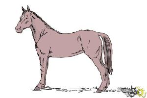 horse easy draw drawing step running side legs left drawingnow shading getdrawings tail steps between right neck