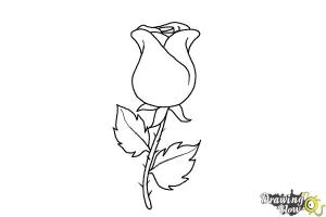 rose drawing simple draw easy bud drawings coloring dying step sketch steps drawingnow