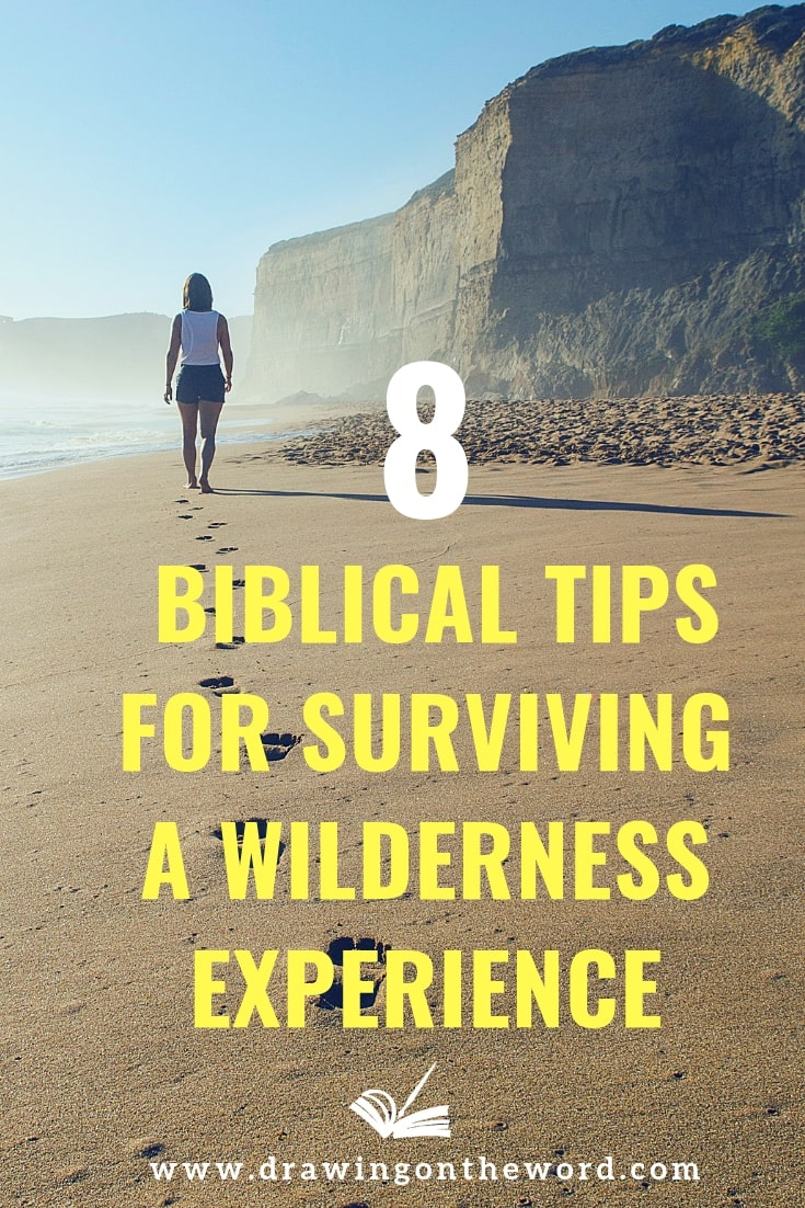 Going through a wilderness experience in your Christian walk? Discover 8 Biblical survival tips to help you navigate through the desert. #wildernessexperience #wilderness #wandering #encouragement #christianhelp #christianity #fixyoureyesongod