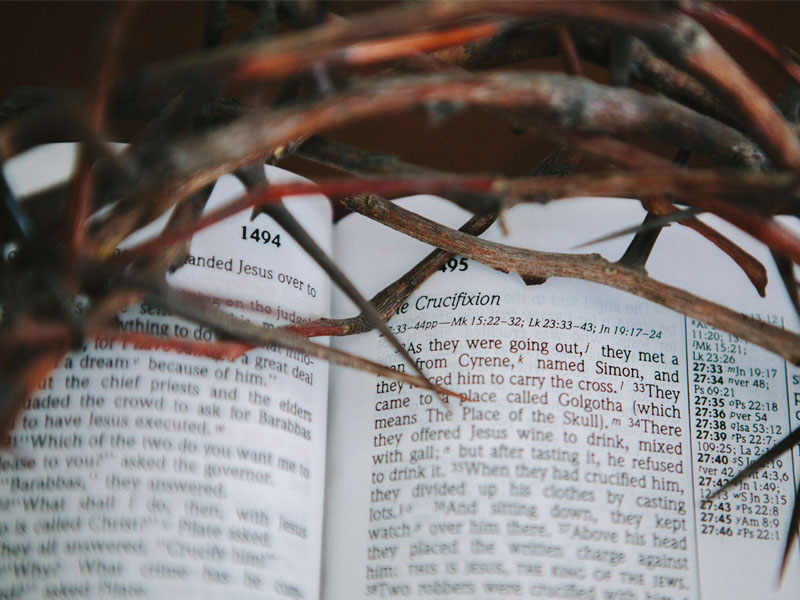 Luke's gospel - Which book of the Bible should you read first?